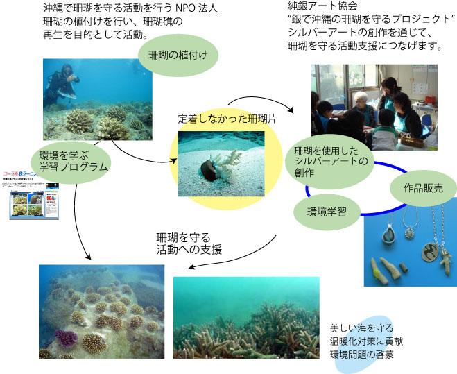 珊瑚 を守るプロジェクト
